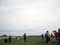 09-apr-2012-aquilonata-aquiloni-in-cielo-02-jpg