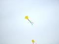 09-apr-2012-aquilonata-aquiloni-in-cielo-04-jpg